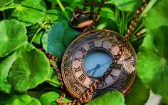 Bronze Antique Pocket Watch on Leaves