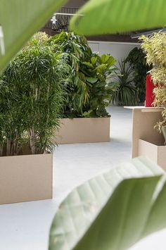 Plinths filled with tropical trees and plants were designed by Swiss studio Big-Game