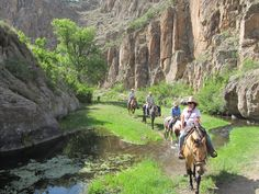 Horseback Riding in the Gila National Forest, New Mexico