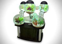 Labyrinth Fish Tank Aquarium (1)