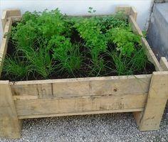 Pallet Gardening Ideas  http://palletfurniturediy.com/pallet-garden/pallet-gardening-ideas/