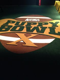 Live from the Puppy Bowl experience in NYC this week! bowl experi, puppi bowl, bowl 2014