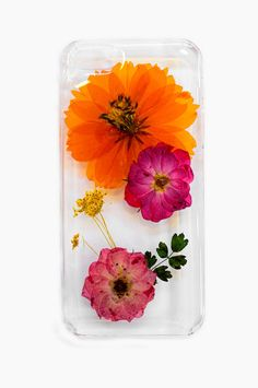 Dried flowers iPhone Case - Summer in the City 5/5s from Moorea Seal