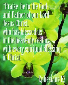 Ephesians 1:3 ~ Praise be to the God & Father of our Lord Jesus Christ