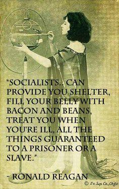 Socialist = Progressive = Slaves  #RonaldReagan #Obama #Progressive #Liberal #Democrat #Politics