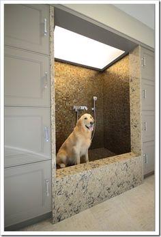Amazing dog shower!
