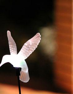 Solar Hummingbird | I Love Lights