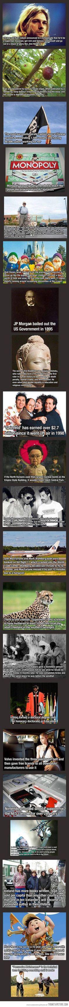 fun facts...