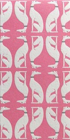 Pink Greyhound-yes
