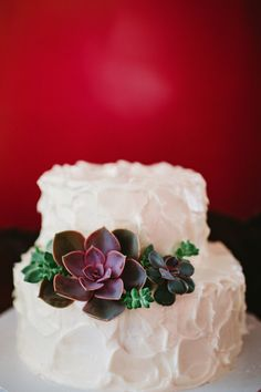 wedding cake with succulents