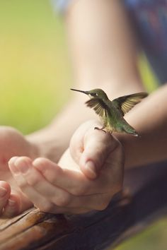 I want to hold small glories with wonder...