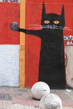 black cat, red wall -  street art in Athens