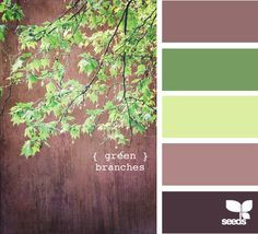 green branches - for the master bedroom - tan walls with light green & dark brown bedspread
