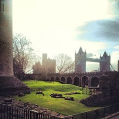 London tower bridge from inside the tower of London:)  by kennyyoungwildandfree | via wheredoyoutravel