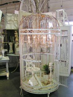 big birdcage