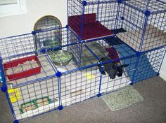 """BunSpace.com Forum: creating an inexpensive bunny """"condo""""/ indoor housing Use for a kitty house?"""