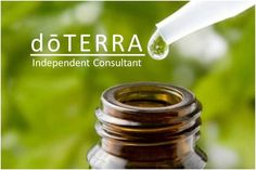 My official doTerra website: http://www.doterra.myvoffice.com/elainesvail/    Be my Pin Pal: http://pinterest.com/elainevail/gift-of-the-earth/    Join my Facebook Group: https://www.facebook.com/groups/TeamEssentiallyElaine/    Add me to your Newsfeed: https://www.facebook.com/EssentiallyElaine