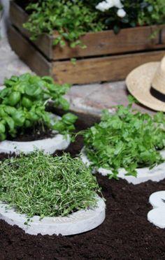 herb garden love