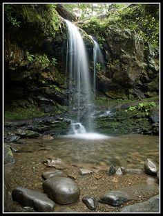 Grotto Falls, Great Smoky Mountains...honeymoon memory