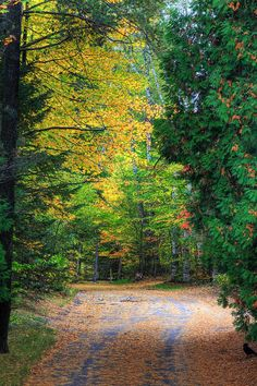 ✮ Autumn colors in Lake Placid, NY