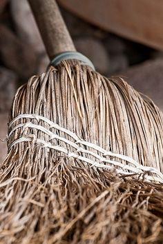 #Primitive_Brooms