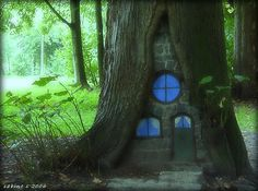 Another fairy house!