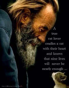 Beautiful Animal Quotes | Love | Cats | Care | Happiness | Adore: A true cat lover cradles a cat with their heart and knows that nine lives will never be enough. ❤❤