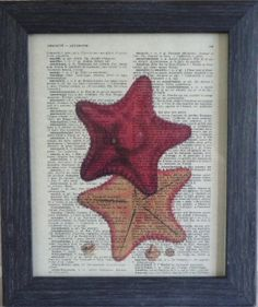 Starfish print on an vintage french dictionary by frenchprints, $8.95