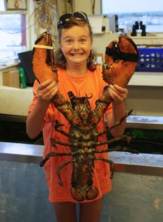 A ginormous lobster