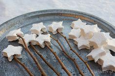 roasting star marshmallows
