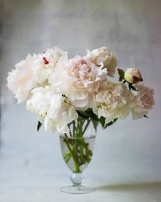 Plant PEONIES in your garden!  See Sweet Paul's tips to growing, cutting and loving your own peony plants! - Sweet Paul Crafty Friday