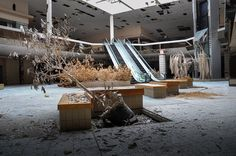 A Haunting Look Inside Some of America's Abandoned Shopping Malls