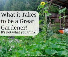 garden grow, green thumb