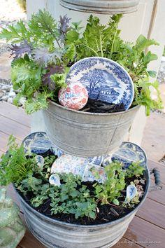 DIY Backyard Kitchen Herb Garden.... love the pretty antique plates.... thrift store elegance