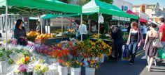 Little_Italy_Farmers_Market-002.jpg (950×435)