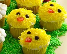holiday, idea, cupcakes, easter chick, food