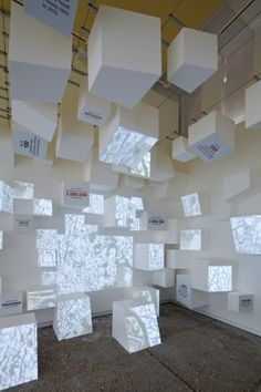 Venice Biennale 2012: Venezuelan Pavilion (3)