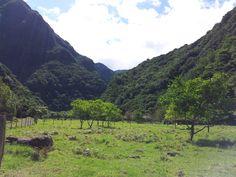 A walk throught the valley of Chão da Ribeira