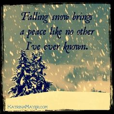 Winter ~ falling snow