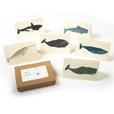 Whales Box Set   BRIKA