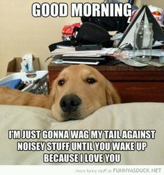 Jack, every morning.