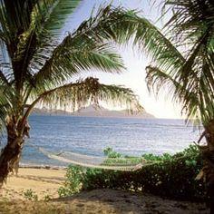 *Fiji, a tropical dream