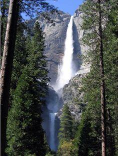 nation park, bridal veils, yosemit nation, california, family camping, us national parks, aunts, yosemit fall, place