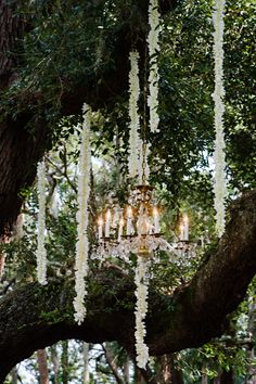Decorated ceremony space with long strands of ivory orchids and antique crystal chandeliers | Pure Sugar Studios | Theknot.com