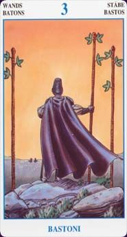 Wands - Card from The Secret Tarot