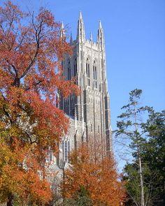 22. Duke University (tie)