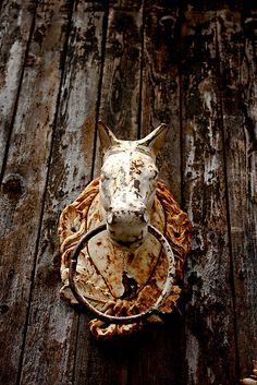 Old Rusty Horse Head Door Knocker