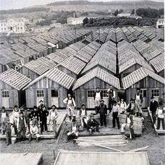San Francisco's 1906 earthquake refugee shacks..... early FIMA?