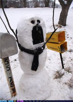 laugh, winter, funni, mailboxes, snowman