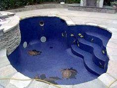Sidewalk Chalk Art swimming pool with turtles